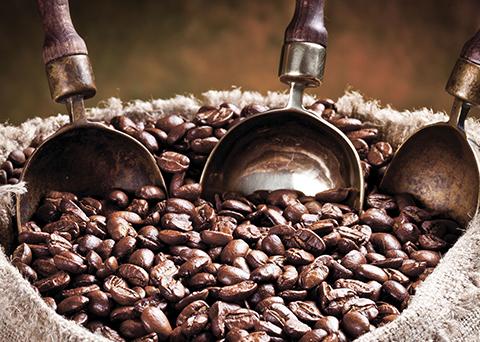 Il caffè dalle origini a oggi