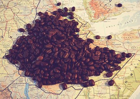 L'origine del caffè